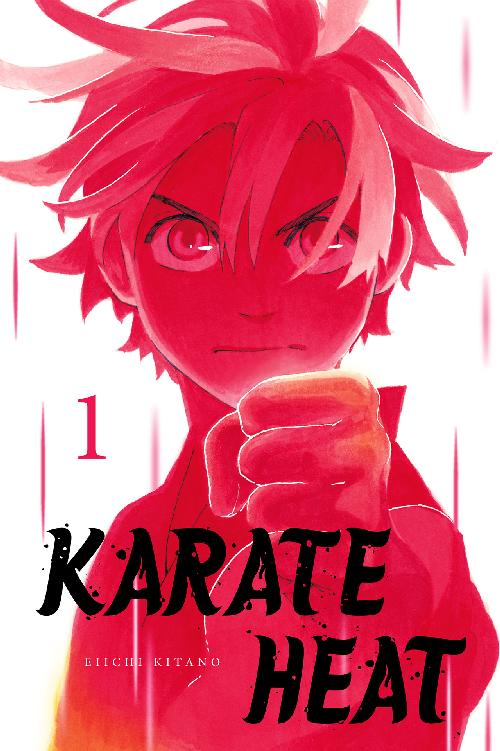 Karate Heat Volume 1 cover