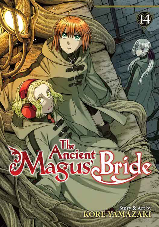 The Ancient Magus Bride Volume 14 cover